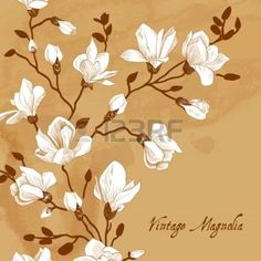 Vintage brown card with a magnolia photo
