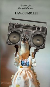 Juanita the Weasel goes 'Say Anything' - oh, Bloggess, thank you for sharing her with the world!