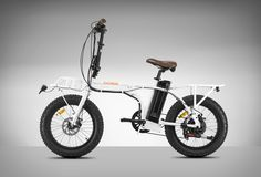 RadMini Electric Folding Bike
