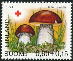Category:Stamps of Finland, 1974 - Wikimedia Commons Red Cross, Postage Stamps, Stuffed Mushrooms, Flora, World, Painting, Wikimedia Commons, Croissant, Coupon