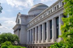 Smithsonian National Museum of Natural History, Washington:</strong> recebe 6,8 milhões d... - Shutterstock