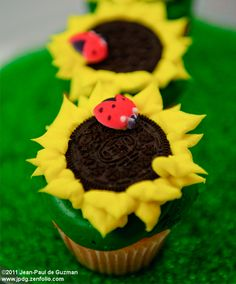 "sunflower cupcakes.. no ""bugs"" on Nell's food!"