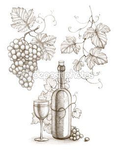 wine bottles, wine, grapes, grape leaves drawings - Google Search
