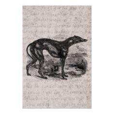 Chiens vintages de lévriers de 1800s de chien de l affiches