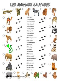 Les animaux sauvages Animal Worksheets, Animal Activities, French Nursery, French Education, How To Speak French, Learn French, French Teacher, Teaching French, French Resources