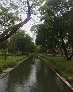 #LumpiniPark  #NoFilter #Thailand #ThaiPark #Bangkok #CityPark #Natureporn #Naturelove #NatureInTheCity #worlderlust #Worldtravler #wanderlust #chasingtheworld #TravelLife #Travellove #AsianAdventure