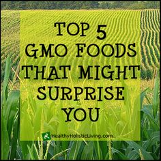 Top 5 GMO Foods That Might Surprise You: You probably know that corn and soy are gmo but did you know that papaya is gmo? Better check out the other top 5 gmos!