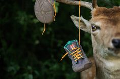 For wild soles. www.wildling.shoes