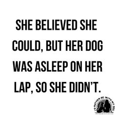 dog quotes funny She believed she could, but her dog was asleep on her lap, so she didnt. I Love Dogs, Puppy Love, Cute Dogs, Anatomy Head, Der Boxer, Timmy Time, Quotes To Live By, Life Quotes, She Believed She Could