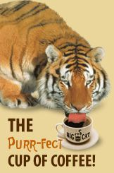 Big Cat Coffees, Franklin, NH  Mail order coffee ....K CUPS  woohoo!