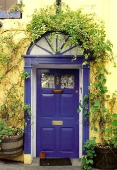 I love this vines around this purple door.     .....rh