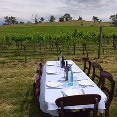 Wily Trout Vineyards - Canberra Australia  www.shenannagans.com