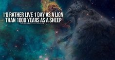 The Best Lion Picture Quotes on Courage, Strength and determination to succeed.