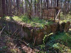 Hidden in a forest, forgotten in time, lies a fake 'city' - one of the last remains of Hitler's dream of the world capital 'Germania', Four buildings // towers, each 20 meters high, built of reinforced concrete that served as a test site for testing both bombs and construction, materials and types of buildings to build bomb-proof homes for civilians in Germania. #whitehouses #WorldWar2 #WW2 #german #Germania #Hitlers Abandoned Buildings, Abandoned Places, Places Around The World, Around The Worlds, Ww2 Weapons, Copyright Images, Underground Bunker, Concrete Building, Brick Facade