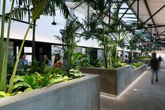 G8A's 'jungle station' links coworkers with a green connector in ho chi minh city