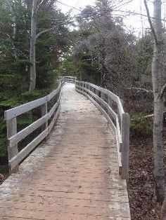 Section of Greenwich Dunes trail at the nearby Greenwich PEI National Park. Beautiful walks here in all seasons