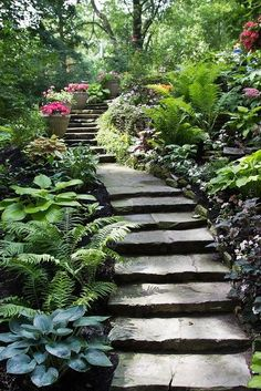 shade garden under stairs - Google Search