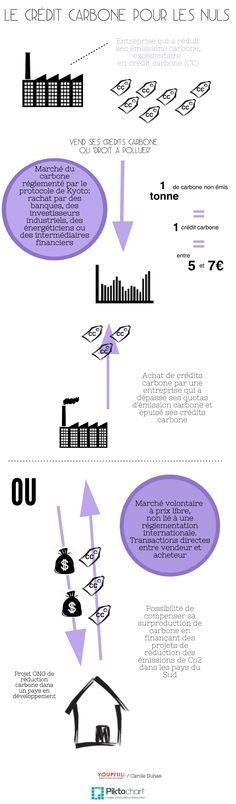 [Infographie] Le crédit carbone pour les nuls | YOUPHIL