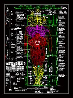 Anatomia oculta de gnosis (dwgDibujo de Autocad)