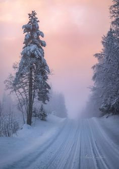 ***Winter road (Finland) by Asko Kuittinen❄️cr. - ***Winter road (Finland) by Asko Kuittinen❄️cr. Winter Photography, Nature Photography, Landscape Photography, Winter Love, Winter Magic, Winter Scenery, Snow Scenes, All Nature, Winter Beauty