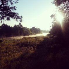 Mgła na rzece Wkrze. Fog over the Wkra river.  #dzieńdobry #goodmorning #spacer #walk #lato #summer #rzeka #river #wkra
