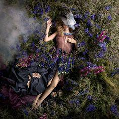 """Delphinium"" by Alexia Sinclair Photography"
