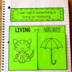 Interactive Science Notebook-Living or Nonliving
