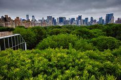 The Metropolitan Museum of Art rooftop garden ... Upper East Side of Manhattan ... NYC