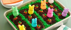 his festive bunny garden cake is quick and easy to make, thanks to the help of these adorable PEEPS® marshmallow bunnies. This festive bunny garden cake is quick and easy to make, thanks to the help of these adorable PEEPS® marshmallow bunnies. Easter Deserts, Easter Snacks, Easter Peeps, Hoppy Easter, Easter Treats, Easter Recipes, Easter Food, Desserts For Easter, Easter Bunny Cake