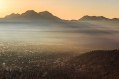 Scent of morning Photo by Hiroyuki Morita -- National Geographic Your Shot