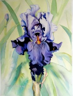 Tammy Gagne   WATERCOLOR
