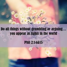 Philippians 2:14-15 ~  Do all things without grumbling or arguing, you appear as lights in the world...