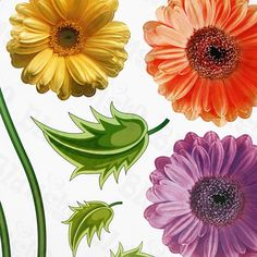 Colorful Flowers - Large Wall Decals Stickers Appliques Home Decor