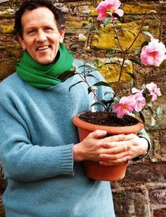 Camellias are prone to all manner of problems. Dont fret, says Monty Don, they can be cured...