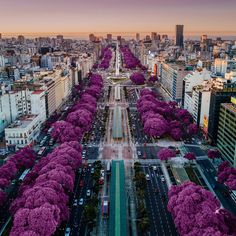Argentina- Buenos Aires - Architecture and Urban Living - Modern and Historical Buildings - City Planning - Travel Photography Destinations - Amazing Beautiful Places Visit Argentina, Argentina Travel, Drone Photography, Travel Photography, Photography Training, Amazing Photography, Photography Ideas, Nature Photography, Places To Travel