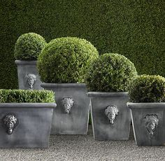 Estate Zinc Selene Tapered Planters - For around our pool?