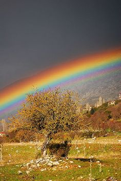The color and definition in this rainbow...beautiful
