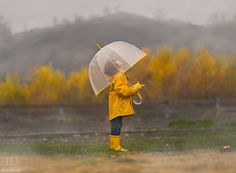 "Image in *rain・drop~雨・雫""☔️💧 collection by unknown Rainy Day Photography, Rain Photography, Children Photography, Imagine Photography, Family Photography, Winter Shower, Kids Umbrellas, Autumn Rain, Fall Winter"