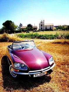 Citroen DS convertible - cabriolet in red classic - klassieker. Voor tweedehands onderdelen van recente Citroen modellen kijk eens hier: https://bartebben.nl/onderdelen/citroen.html Gebruikte onderdelen met garantie en vakkundig advies: https://bartebben.nl/map/gebruikte-onderdelen.html