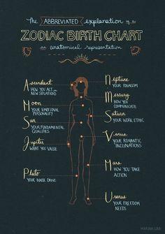 Numerology Spirituality - Anatomical representation of a zodiac birth chart. Astrology Numerology, Astrology Zodiac, Zodiac Signs, Astrology Planets, Astrology Chart, Numerology Chart, Saturn Astrology, Astrology Report, Horoscope Capricorn