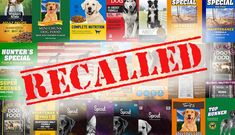 Sunshine Mills, Inc. is expanding an earlier recall of pet food products that were made with corn that contained Aflatoxin at levels above FDA's action levels. This is an expansion of the recall initiated September 2, 2020, after an investigation conducted along with the U.S. Food and Drug Administration determined that additional corn-based pet food […] The post RECALL ALERT: 21 Pet Foods Across Multiple Brands Recalled over Dangerous Aflatoxin appeared first on The Catington Post.