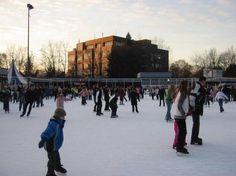 Eine Eisdisco für Kinder, ein Eishockeyfeld, eine Eisstockbahn und vieles mehr gibt es auf der familienfreundlichen Eisbahn in Berlin-Lankwitz.