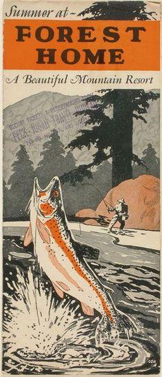trout fishing resort