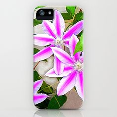 FREE Shipping + $ 5.00 OFF NOW! Clematis Trio iPhone & iPod Case by Shelia Kempf ArtWorks - $35.00