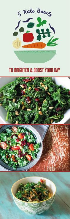 No longer do you have to plug your nose and fork down your kale. We have given you the 5 best kale bowl recipes that you will love!