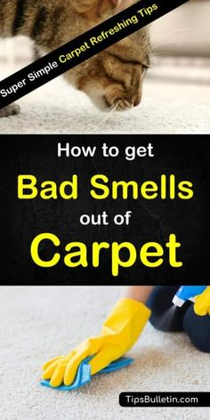 Hands-on tips for how to get bad smells and odors out of the carpet. Learn how to remove offensive smells like dog urine and pet odors using simple ingredients you can find in your pantry like white vinegar and baking soda. Get your carpets smelling great Deep Cleaning Tips, House Cleaning Tips, Cleaning Solutions, Spring Cleaning, Cleaning Hacks, Cleaning Carpets, Upholstery Cleaning, Organizing Tips, Dog Urine
