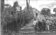 chapultepek: Mexican Ruins Santa Cecilia This vintage postcard shows a pyramid at the ruins of...