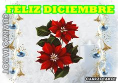 FELIZ Y BIENVENIDO DICIEMBRE  #BienvenidoDiciembre #MTVStars #ArribayAbajo #FelizLunes  https://www.cuarzotarot.es/