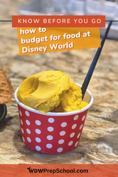 Snacks and dining out can really add up on a Disney World trip. We have a handy spreadsheet (plus several easy tricks!) that can help you know - before you go - how much money you'll need. Disney On A Budget, Disney World Planning, Disney World Trip, Disney Vacations, Disney Trips, Tusker House, Grill Breakfast, Coronado Springs