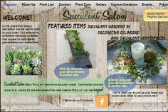 Rare Succulent Plants and Living Art handmade and grown in California